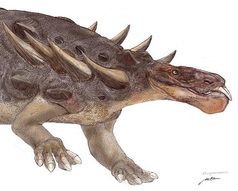 Zhongyuansaurus03.jpg